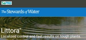 Littora website header