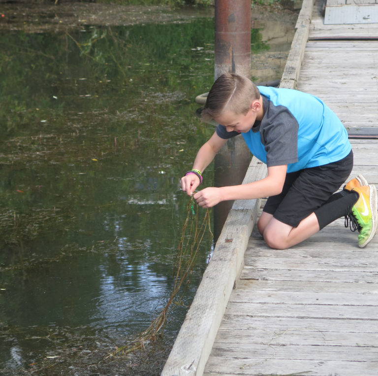 Boy fishing through weeds at sportsmans launch in May