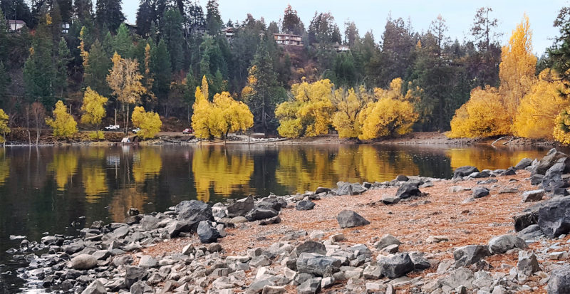 Fall colors on trees decorate the shore along the dike at HaydenLake.