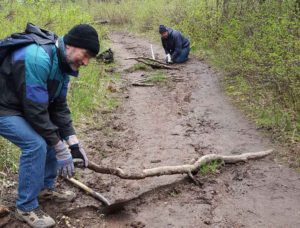 Volunteers clear trip-hazards along the trail.