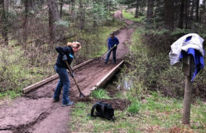 Volunteers clear bridge along English Point Trail