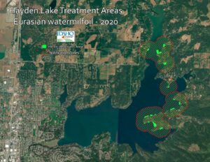 2020 EWM Treatment colvered 26.3 acres of lottoral zone on the east shores of the lake.